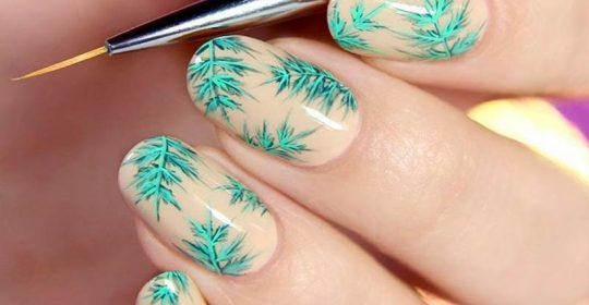 Types Of Nail Brush and Tips How Use Them